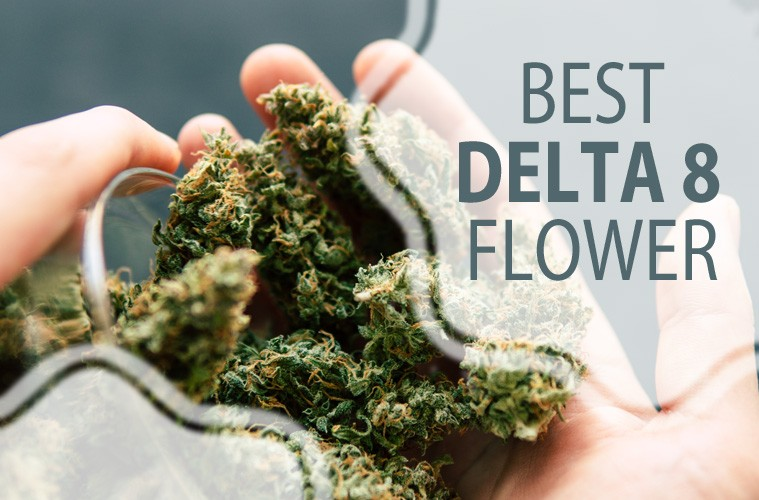 How to find out the best place to buy delta-8?